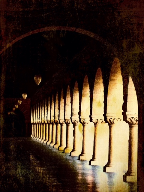Stanford Arches I am also smitten with arches and columns  This is a favorite spot of mine on the beautiful Stanford campus